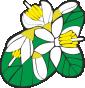 Parco dei Monti Lucrertili Logo